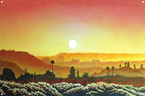Mission Valley Sunset Metal Art Print by David Linton (12