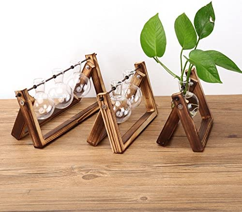 Ivolador Desktop Glass Planter Bulb Vase with Retro Solid Wooden Stand and Metal Swivel Holder for Hydroponics Plants Home Garden Wedding Decor (3 Bulb Vase) 51eykZQA JL