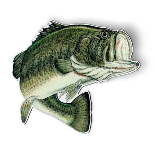 AK Wall Art Largemouth Bass Fishing Fish - Magnet - Car Fridge Locker - Select Size