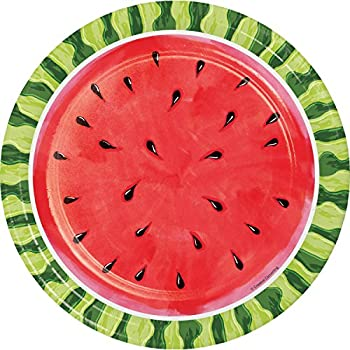 Watermelon Whimsy Paper Plates 24 ct  sc 1 st  Amazon.com : watermelon paper plates - pezcame.com