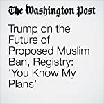 Trump on the Future of Proposed Muslim Ban, Registry: 'You Know My Plans'   Abby Phillip,Abigail Hauslohner