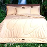 Natura All-Season Wool Filled Comforter - Queen