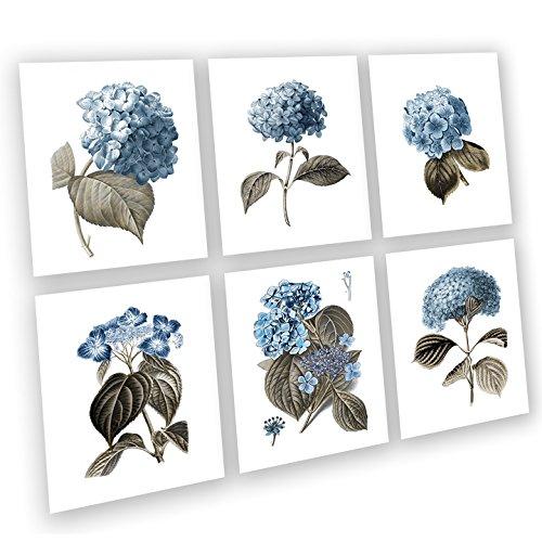 - Blue Flowers Botanical Prints Hydrangea Art Prints Set of 6 Unframed Blue Flowers Wall Art Farmhouse Decor Blue_Hydrangea6A