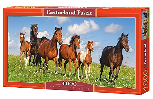 Paso Fino Herd, 4000 Piece By Castorland Puzzles
