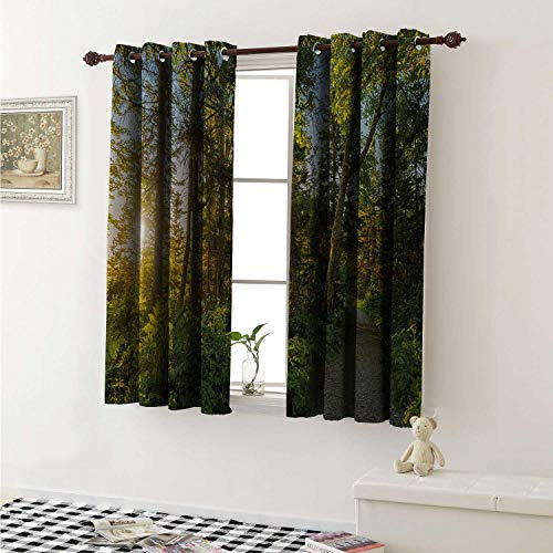 shenglv Landscape Blackout Draperies for Bedroom National Park in Cape Breton Highlands Canada Forest Path Trees Tranquility Photo Curtains Kitchen Valance W72 x L63 Inch Blue Green