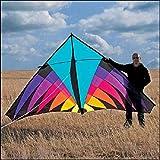 AMLJM Free Shipping Outdoor Fun Sports Nylon Power Triangle Kite Good Flying