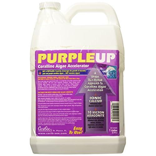 Carib Sea ACS01530 Purple Up Corraline Algae Growth Accelerator for Aquarium, 1-Gallon for sale