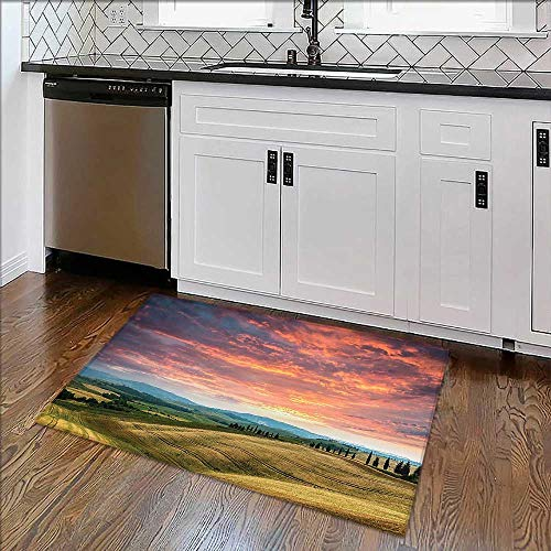 Machine-Washable Large Bathroom Mat Tuscany Italy. Cypress Trees Fields Crop Cloudy Sky Cloudscape Holiday Destination Non-Toxic Non-Slip Reversible Waterproof ()