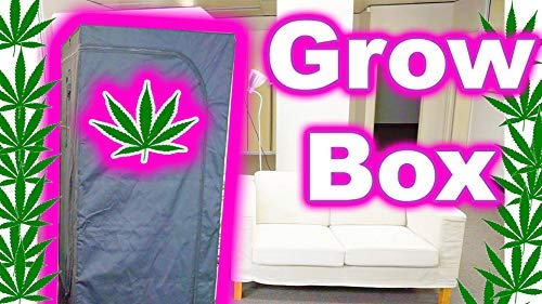 Hydro Home Grow New 2019 Complete Indoor Grow Tent LED Setup 4x4 Tent (6 Plants) 600W LED Grow Lights, Air Filtration kit and Seedling Germination. All in one Combo Package Deal
