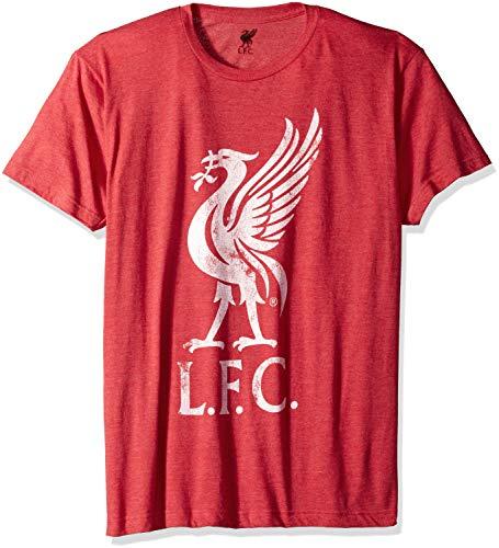 (Fifth Sun Official Liverpool FC Bird Logo Men's Tee, red//Premium Heather, Small)