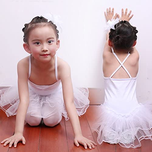 Imixcity Baile de Ballet Jersey Camiseta de Ni/ña Maillot Traje de Ballet Leotardo Princess Girls Vestido de Pantera Falda de Tul Traje de Carnaval Edad: 3-10 A/ños