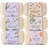 O Naturals 6 Piece Moisturizing Body Wash Soap Bar Collection. 100 Percent Natural, Made With Organic Ingredients, Infused With Therapeutic Essential Oils. Triple Milled, Soap For Women and Men. 4 Ounce Each.