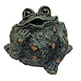 """Toad Hollow """"Romeo"""" Motion Activated Whistling Toad Statue 6″, Natural Green Frog For Sale"""