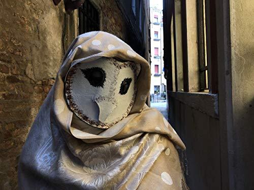 Barn Owl Masquerade Mask - Paper Mache Owl Mask Prop