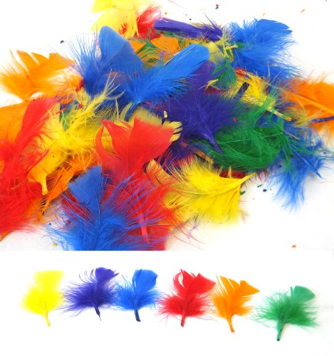 Assorted Feathers 100-Pack - Bright Mixed Colors 14g Bag Craft Feather