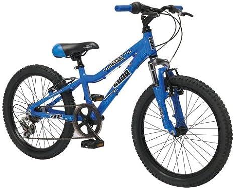Barracuda - Bicicleta reclinada: Amazon.es: Deportes y aire libre