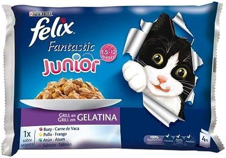 Purina Felix Fantastic Gelatina comida para gatos Selección ...