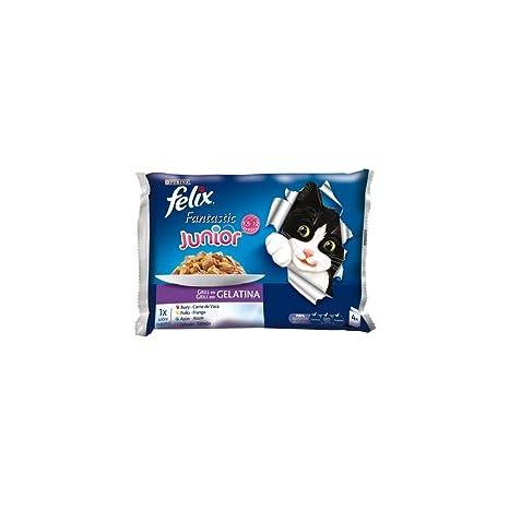 Purina Felix Fantastic Gelatina comida para gatos Selección Surtido de Verduras 10 x [4 x