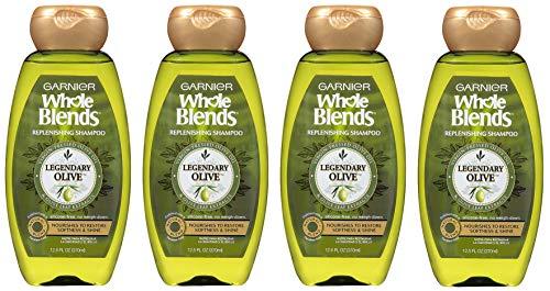 Garnier Whole Blends Replenishing Shampoo Legendary Olive, Dry Hair, 4 -