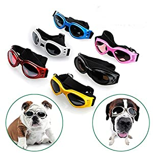 Pet Dogs UV Sun Glasse Eye-wear Protection Sunglasse