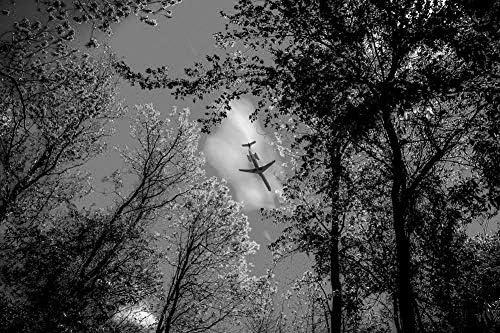 森の上のエアバス壁紙-自然の壁紙-#41428 - 白黒の キャンバス ステッカー 印刷 壁紙ポスター はがせるシール式 写真 特大 絵画 壁飾り120cmx80cm