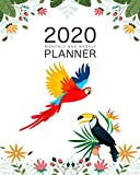 2020 Weekly And Monthly Planner: Daily Organizer & Agenda | Pretty Cute Parrot Lovers | Simple Dated Week and Month Calendar with Notes | Schedule ... (2020 Weekly and Monthly Parrot Planne