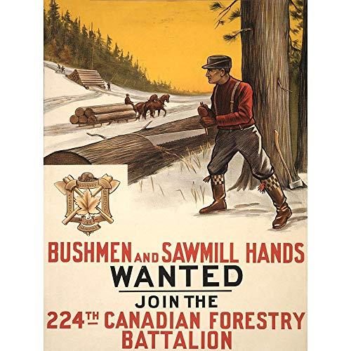 Wee Blue Coo Propaganda War WWI Canada Recruit Forestry Battalion Log Saw Unframed Wall Art Print Poster Home Decor Premium