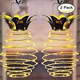Ptwinners Lumens Hanging Solar Lights Outdoor Solar Lights Hanging Solar Lantern with Handle Pineapple,2 Pack