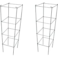 Amazon Best Sellers: Best Plant Cages & Supports