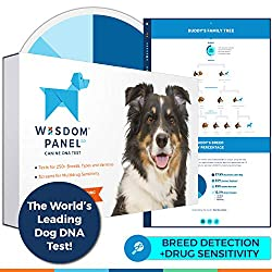 Wisdom Panel 3. 0 Breed Identification DNA Test Kit Wisdom Panel 3. o covers 250 breeds, types and varieties including all those recognized by the American Kennel Club (AKC) and can be run for mixed-breed, designer, or purebred dogs. What is Wisdom P...