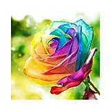 Blxecky 5D DIY Diamond Painting Crafts Kits,Rainbow Rose(14X14inch)