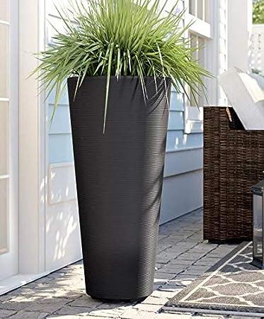 Amazon.com: Soportes para plantas al aire libre para ...