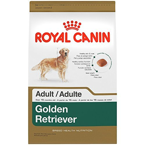 Cheap ROYAL CANIN BREED HEALTH NUTRITION Golden Retriever Adult dry dog food, 17-Pound by Royal Canin