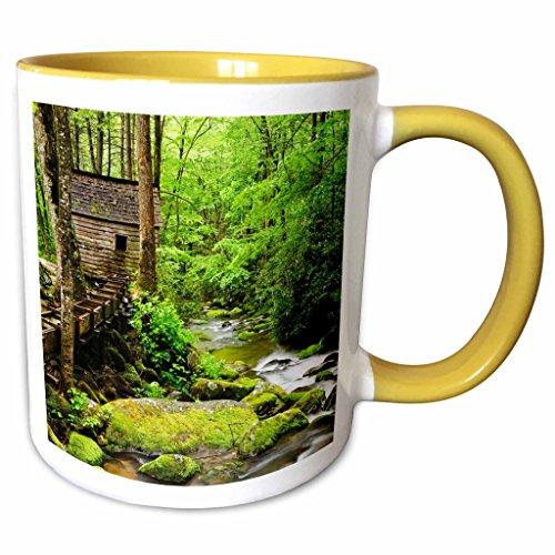 3dRose Danita Delimont - Mills - Tub Mill, Great Smoky Mountains, Tennessee, USA - US43 BJY0009 - Jaynes Gallery - 11oz Two-Tone Yellow Mug (mug_146558_8) Tennessee Beverage Tub