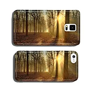 Sun rays through backlit silhouette woodland trees light up for cell phone cover case iPhone6