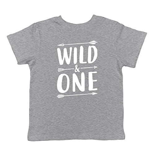 Wild & One Infant T-Shirt, SpiritForged Apparel Light Gray 12 Months