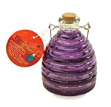 Toland Home Garden Large Purple/Grape Pesticide-Free 5.5-Inch Diameter Glass Wasp and Fruit Fly Trap 10249
