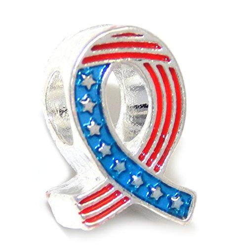 Usa Color Flag Charm (Silver Plated