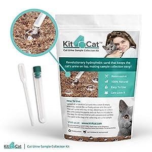 Kit4Cat Hydrophobic Sand 2 lb bag 98