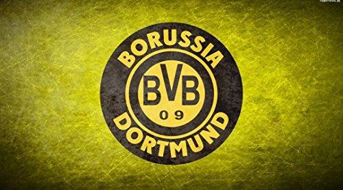 Qinuo 25x14 inch Borussia Dortmund Silk Poster DGS9-524
