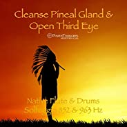Cleanse Pineal Gland & Open Third Eye: Native Flute & Drums (Solfeggio 852 &