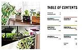 Countertop Gardens: Easily Grow Kitchen Edibles