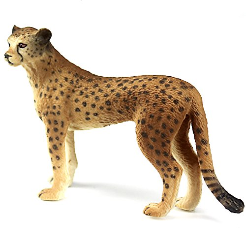FUNSHOWCASE African Jungle Animals Female Cheetah Toy Figure Realistic Plastic Figurine Height 2.2-inch