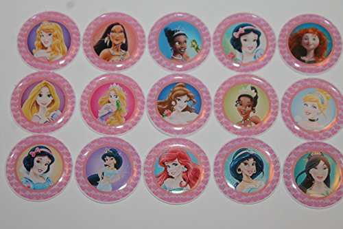 Disney Princess Theme Inspired Refrigerator Magnets - 15 Piece Set 1