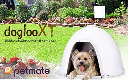 Petmate Caseta Dogloo XT, 15-25 LB, M, 2: Amazon.es: Productos para mascotas