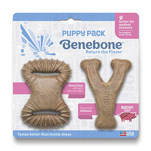 Benebone Puppy Pack Dog Chew Toys, Made in USA, Real Bacon Flavor