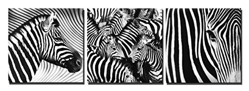 zebra panel art - 2