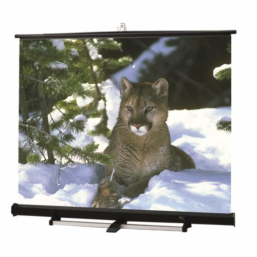 Luma 2 / R Matte White Portable Projection Screen Viewing Area: 144