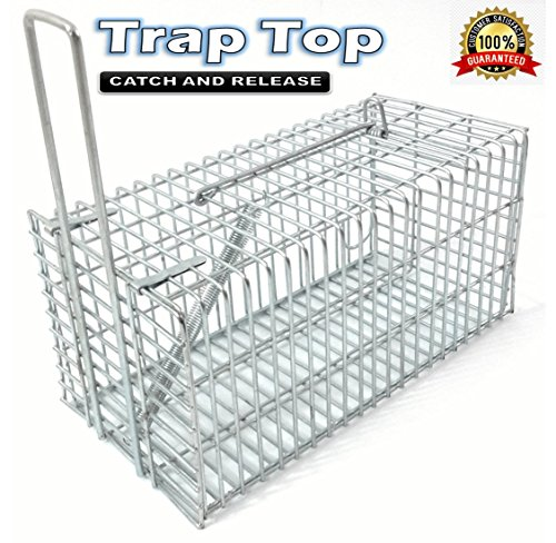 Cage End (Rat Trap , Rats and Mice Live Humane Cage Trap , One-Door small animal Pest Control Rodents Catcher - By Trap Top)