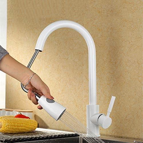 洗面水栓 ステンレス鋼製ハンドルシングルレバーキッチンアウトのプルダウンスプレー春のキッチンのシンクの蛇口 洗面台 キッチン